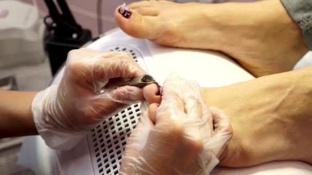 Behandlung von eingewachsenen Nägeln. Eingewachsenen Nagel. Der Arzt ist eine Fußpflegerin. Hardware-Pediküre. Podologie.