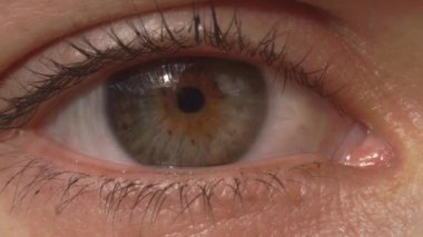 eye macro...zoom in 4k