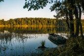 Fotografie rybník