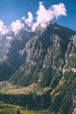 majestic rocky mountains and evergreen trees in indian himalayas