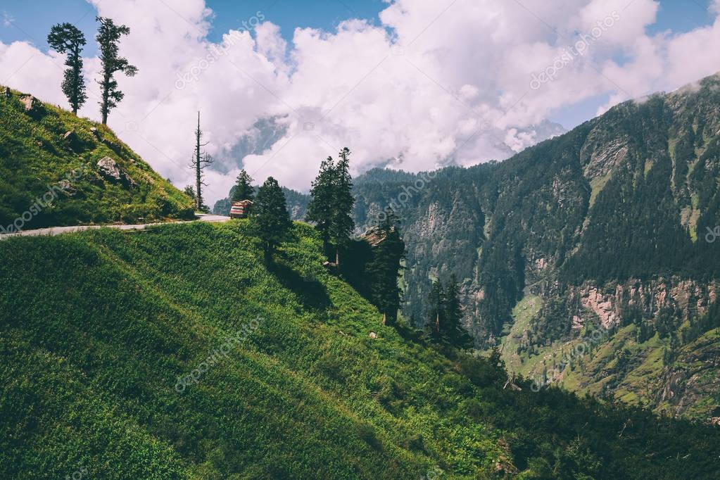 beautiful trees and road with car in scenic mountains, Indian Himalayas, Rohtang Pass