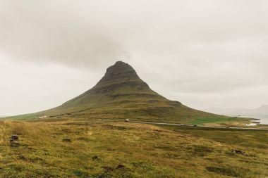 bitkiler ve İzlanda'daki yol kaplı güzel yeşil tepe