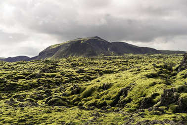 majestic landscape with mountains and moss in Iceland