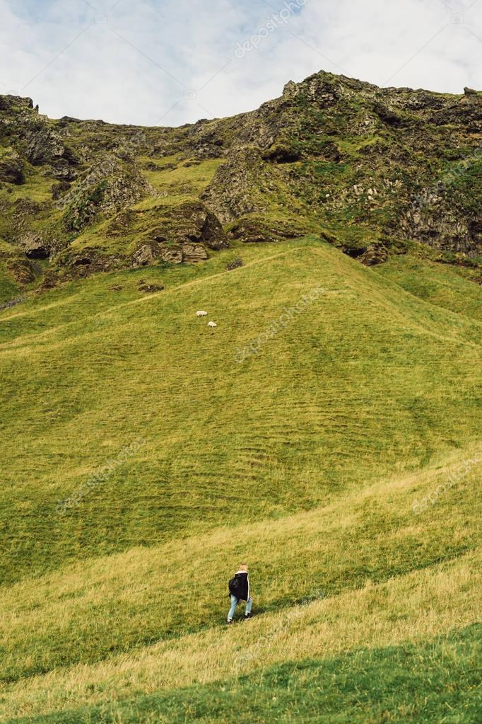 high angle view of person walking on footpath and beautiful landscape in Iceland