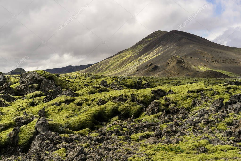 majestic landscape with scenic mountains and moss in Iceland