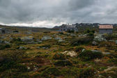 field with grass and stones with houses under stormy sky, Norway, Hardangervidda National Park