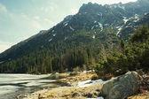 Fotografie Pohled na skalnaté pobřeží s kameny proti vodě a stromy na kopci na pozadí, Morskie Oko, mořské oko, Tatra National Park, Polsko