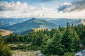 Karpatské hory