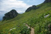 Blick auf Pfad und Tal, Russische Föderation, Kaukasus, Juli 2012