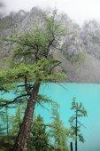 gyönyörű táj kilátás a hegyekre és a tóra, Altáj, Oroszország