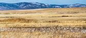Fotografie krásnou krajinu s suché trávy a sněhu limitován horách, Krasnojarsk region, Rusko