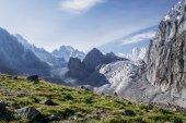 krásná krajina se zelenou vegetací a sníh vrcholky Skalistých hor, Kyrgyzstán, ala archa