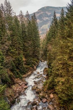 view of river stream surrounded by trees and stones on shores, hills on background, Morskie Oko, Sea Eye, Tatra National Park, Poland