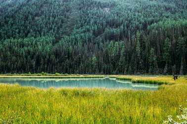 landscape with mountain covered with trees and lake in valley, Altai, Russia