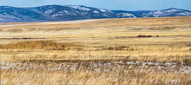 beautiful landscape with dry grass and snow capped mountains, krasnoyarsk region, russia