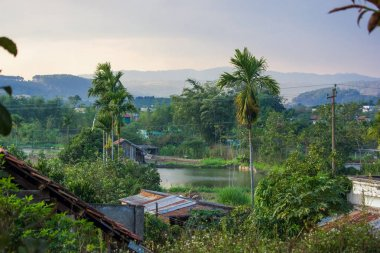 beautiful green tropical plants and rooftops with mountains behind, vietnam, dalat region