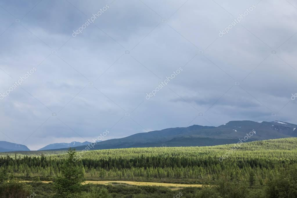 scenic view of cloudy sky, mountains and forest, Altai, Russia