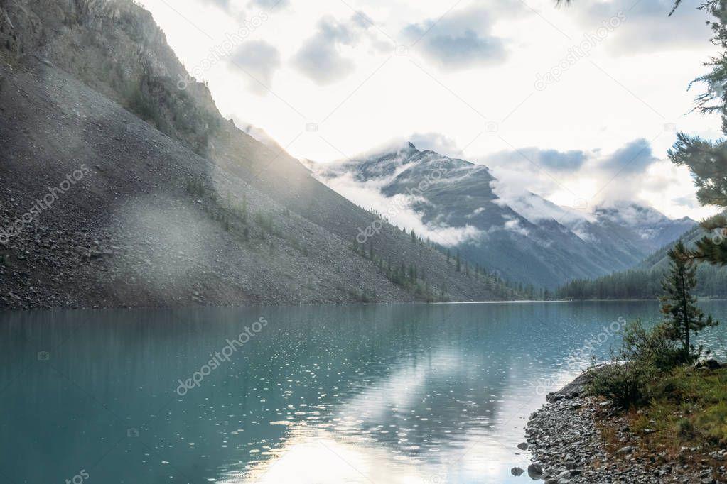 Фотообои чистое озеро, деревья, горы, Алтай, Россия