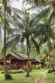 Fotografie landscape with green palms and bungalows for vacation