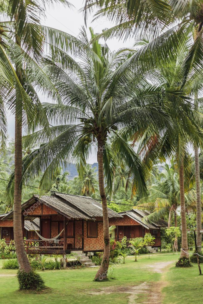 landscape with green palms and bungalows for vacation