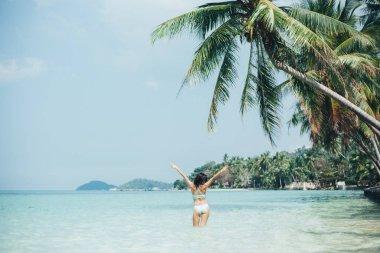 Back view of slim girl in bikini at tropical sea resort stock vector