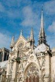 Fotografie katedrála Notre dame