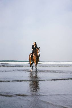 front view of young woman riding horse with ocean behind