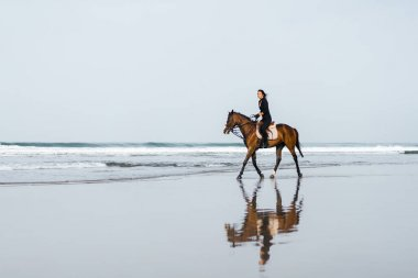 distant view of woman riding horse on sandy beach with ocean behind