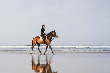 young female equestrian riding horse on sandy beach
