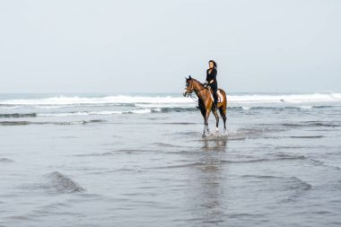 distant view of female equestrian riding horse in water