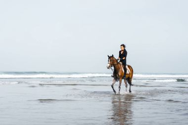 female equestrian riding horse in wavy water