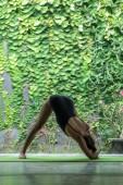 Photo Forward Bend pose