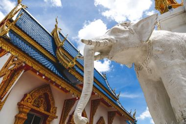bottom view of white elephant sculpture at thai temple
