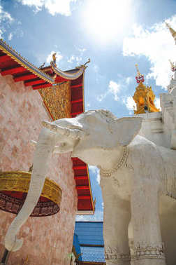Beautiful elephant sculpture at thai temple stock vector