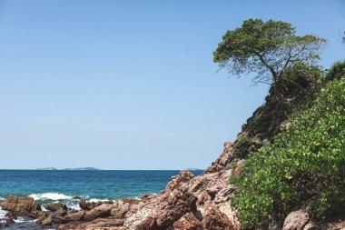 beautiful rocky coast on sunny day