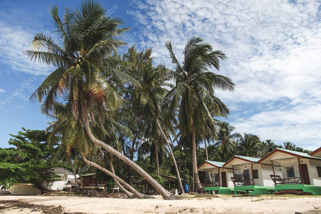 beautiful palm trees with shacks on tropical beach