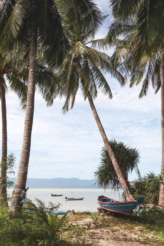 palm trees on tropical beach with boats floating in water
