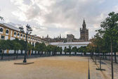 Photo scenic view of city square with trees and Seville Cathedral, spain