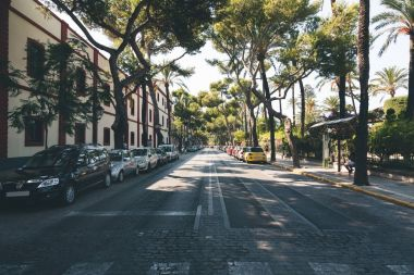 view of spanish avenue with trees and cars