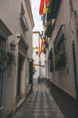 view of narrow street with spanish flags