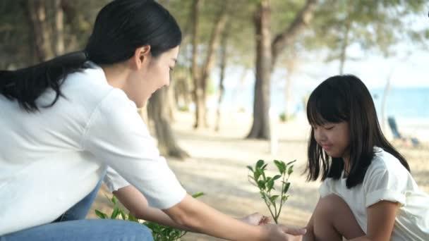 Erdőtelepítési koncepció. A családok segítenek fát növeszteni a környezet védelme érdekében. 4k felbontás.