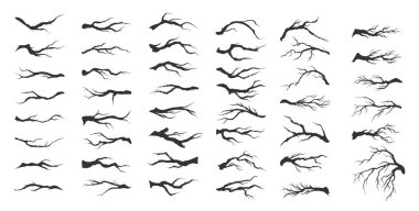 Vector set dry tree branches on white background stock vector