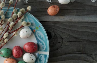 Colorful easter eggs and pussy willow, spring holidays concept