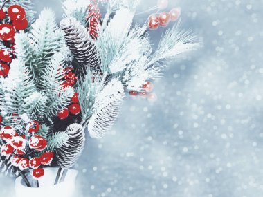 winter background with fir branches cones and snow