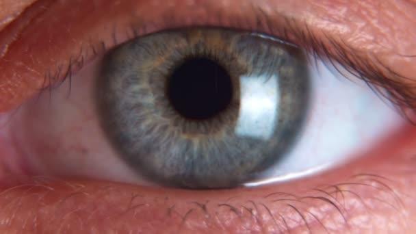 Close up macro eye beautiful blue iris natural beauty