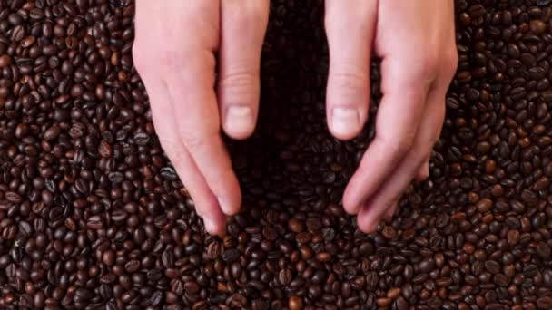 TOP VIEW: Human takes a roasted coffee beans by both hands