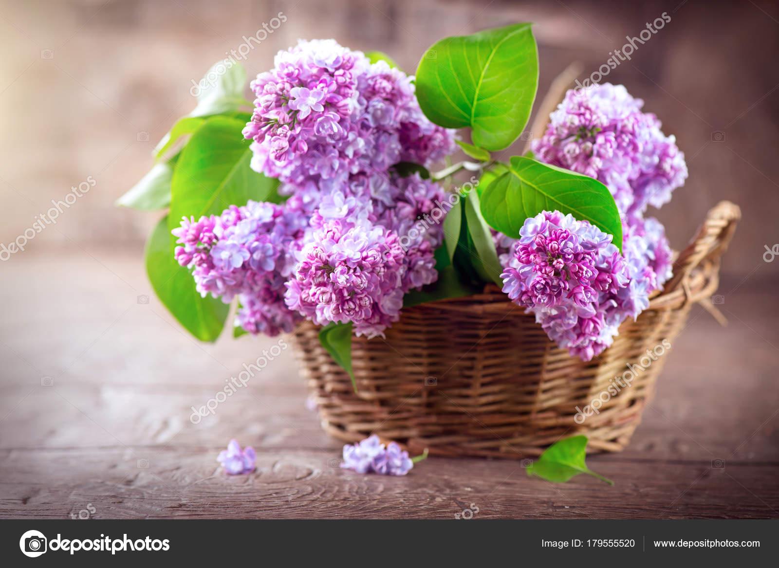 Flores Lilas Con Rosas Sobre Fondo: Manojo Flores Lilas Canasta Sobre Fondo Borroso