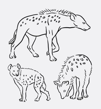 Hyena wild animal line art drawing