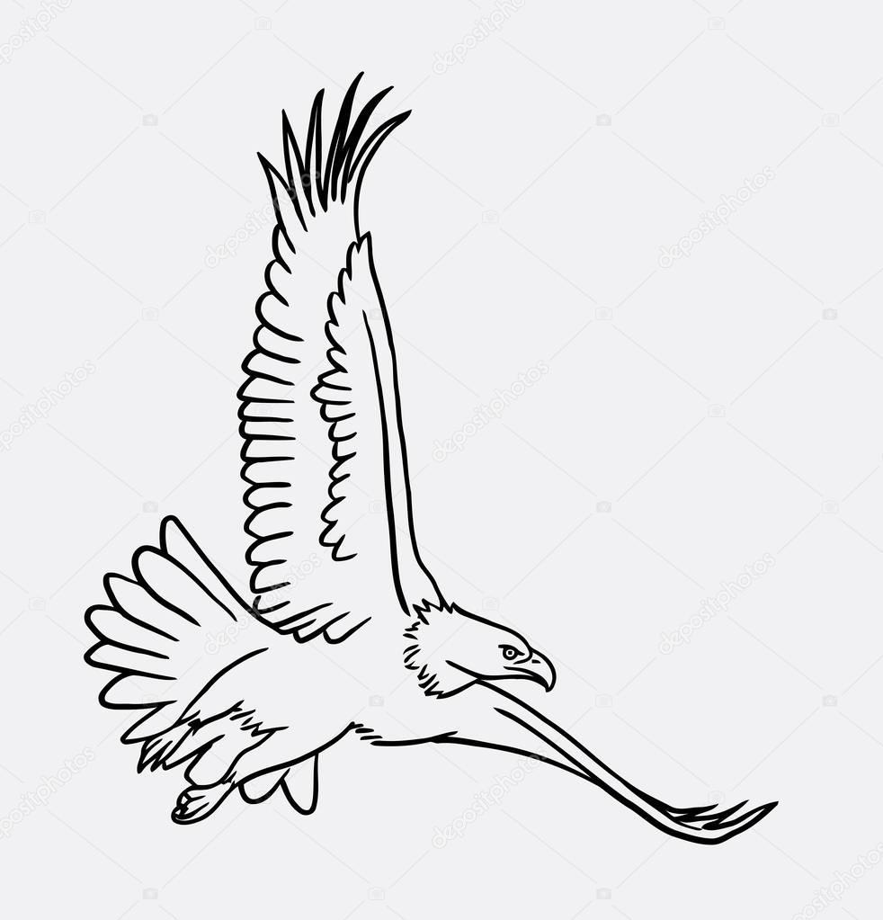 arend vogel met het vliegen lijnen tekenen stockvector