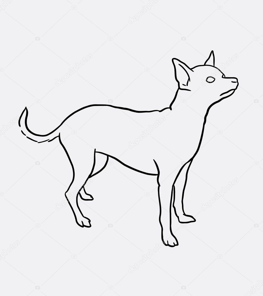 Arte de línea para mascotas perro Chihuahua dibujo — Archivo ...